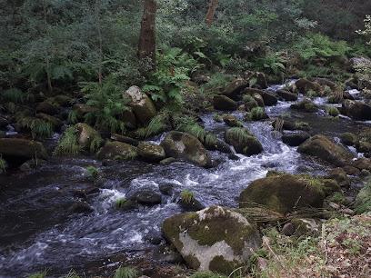 Camino Natural del Río Barbantiño