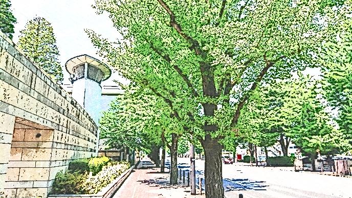 経済 大学 高崎