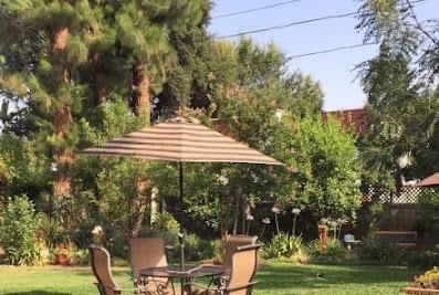 Craypo Lawn & Yard