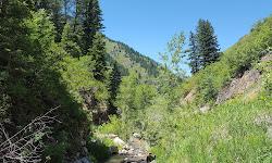 Wheeler Canyon