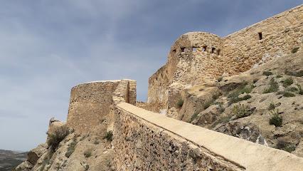 Castillo Peñas De San Pedro
