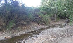 Queen Creek Wash Trail