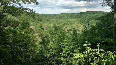 Tinker's Creek Gorge Scenic Overlook