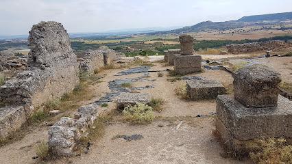 Yacimiento de Ercavica