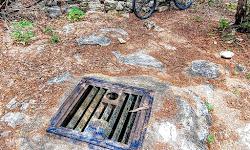 Buttercup Creek Cave Preserve