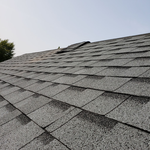 Roofing Ubdegrove Roofing & Renos in Kingston (ON) | LiveWay