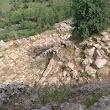 Gaban Antik Yol
