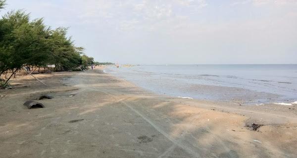 Pantai Nyamplung Pasir Putih