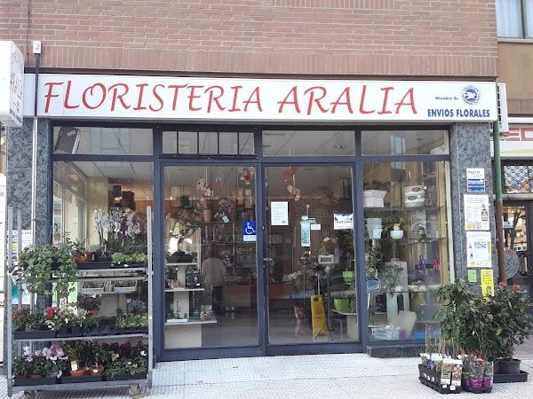 Floristería Aralia