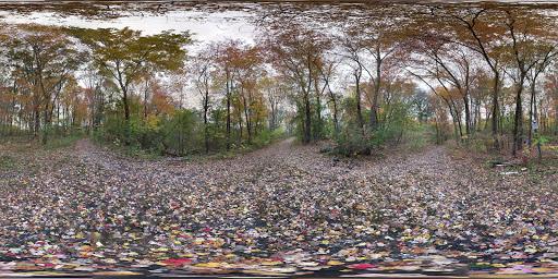 Park «Millennium Park», reviews and photos, 300 Gardner Street, West Roxbury, MA 02132, USA