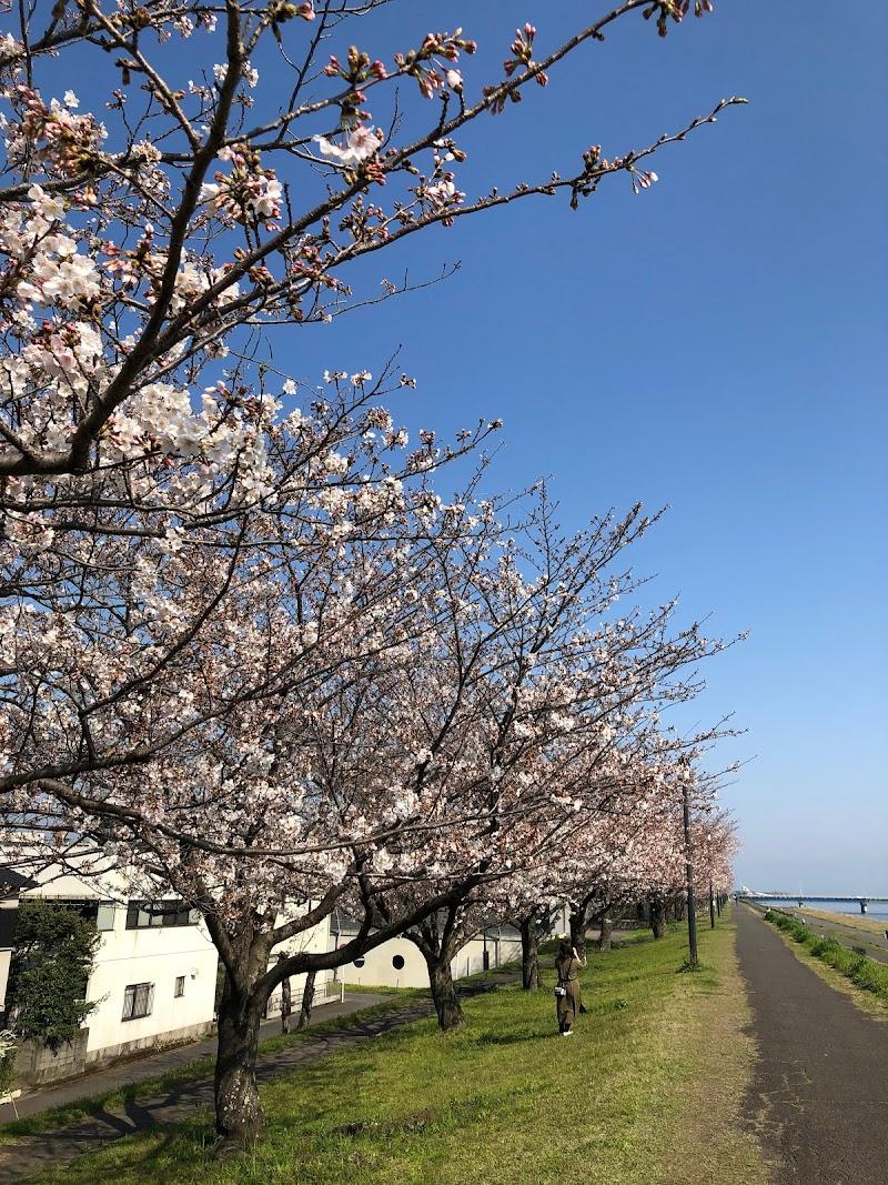 リラクセーション桜(NPO法人)