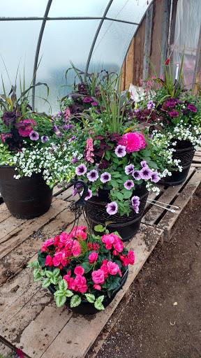 Jardinerie John's Greenhouses Ltd. à Summerside (PE) | LiveWay