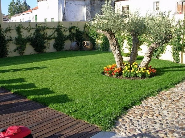 BIZNAGARDEN Jardinería Málaga