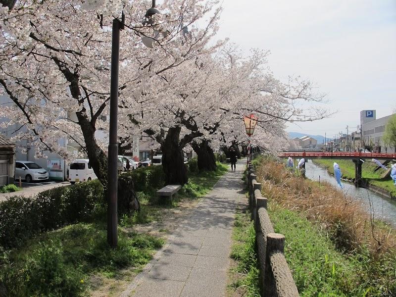 智頭橋 (鳥取県鳥取市元町 橋) - グルコミ
