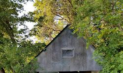 Fernwood Cabin