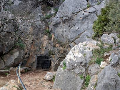 Cueva de la Pileta