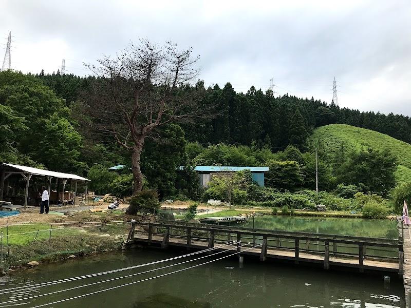 荒井アヤメ園釣り堀BBQ場