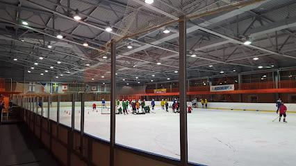 Пингвины хоккейный клуб москва адрес ночной клуб в лас вегасе фото