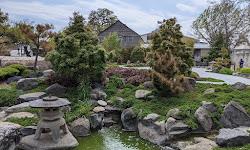 Japanese Garden of Peace