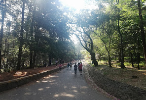 Tlalpan National Park