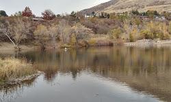 Farmington Pond