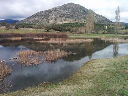 Lagunas de Castrejón