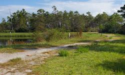 Haney Creek Park