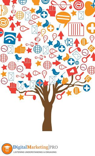 Digital Marketing Pro-img