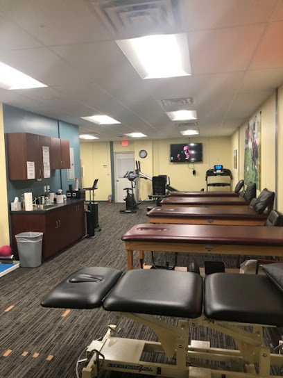 Physical therapist Strive Physical Therapy and Sports Rehabilitation