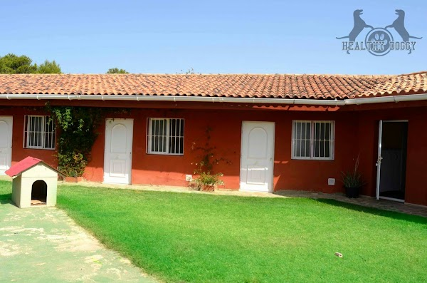 Club Residencial Canino Ecocan Picassent