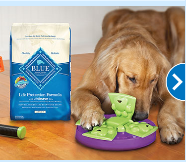 Pet Supply Store «PetSmart», reviews and photos, 15331 Montanus Dr, Culpeper, VA 22701, USA