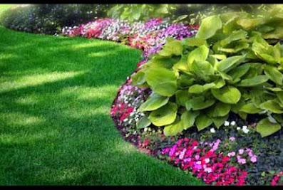 Atlanta Lawn Care Services, Inc