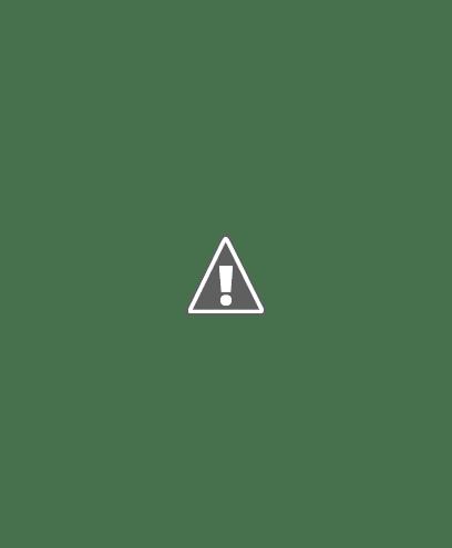EUROINNOVA BUSINESS SCHOOL BOLIVIA