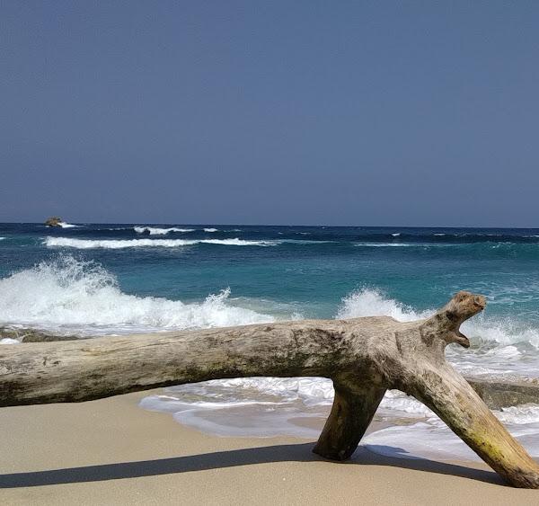 Pantai Pasir Putih Pasetran Gondo Mayit