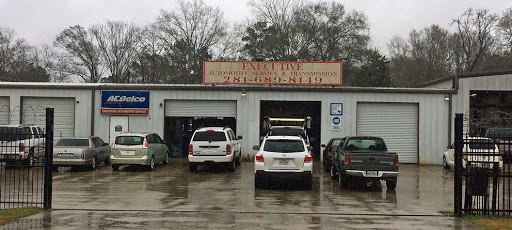 Tire Shop «Executive Automatic Trans Services», reviews and photos, 21361 Lodge Rd, New Caney, TX 77357, USA