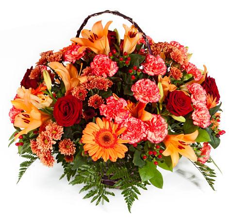 Flores Chiti