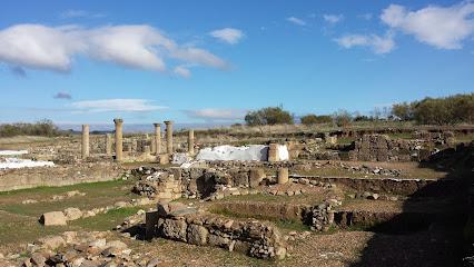 Ruinas Romanas de Sisapo.