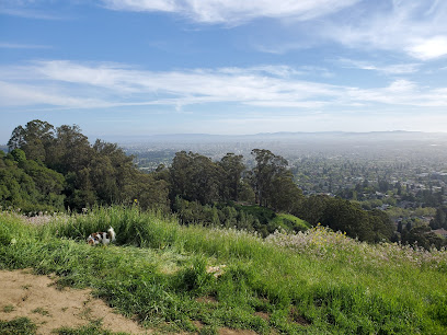 Claremont Canyon Regional Preserve