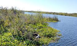 Three Forks Conservation Area North Trailhead