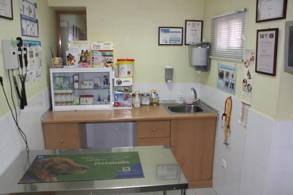 Clinica Veterinaria Amantea