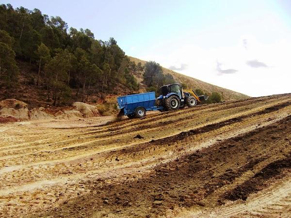 Reforestaciones y Viveros S.L.