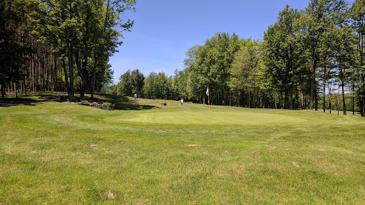 Golf Course «Tall Pines Players Club», reviews and photos, 558 Friendsville Hill Rd, Friendsville, PA 18818, USA