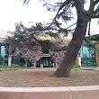 Redwood City Hall