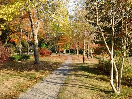 Park «Masconomo Park», reviews and photos, 60 Beach St, Manchester-by-the-Sea, MA 01944, USA