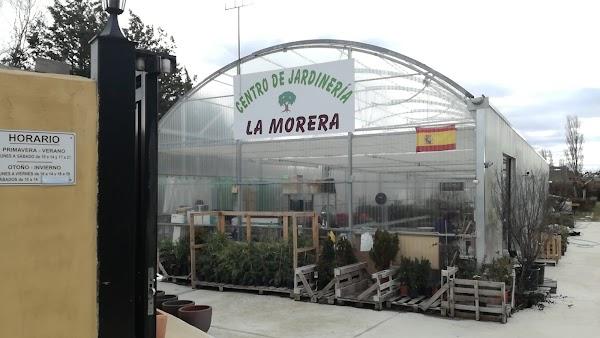 Centro De Jardinería La Morera