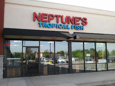 Neptune's Tropical Fish