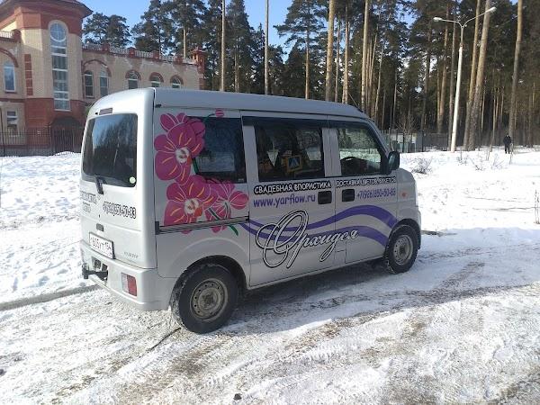 Где купить доставка цветов владимирская область г александров виде цветов