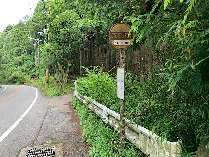 江文峠 (京都 ハイキング コース) - グルコミ