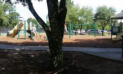 The Park at Fall Creek