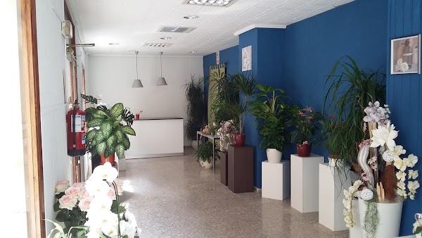 Floristería Nova Lis